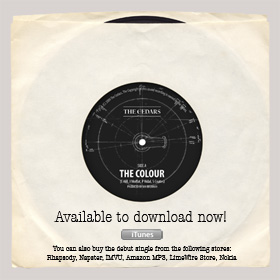 The Colour - Single